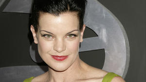 pauley-perrette-the-53rd-annual-grammy-awards-pauley-perrette-19301912-2031-2560